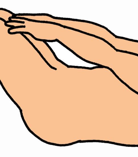腹筋(腹直筋)の筋力強化