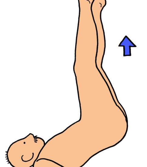 腹筋の筋力強化(下肢の挙上運動)