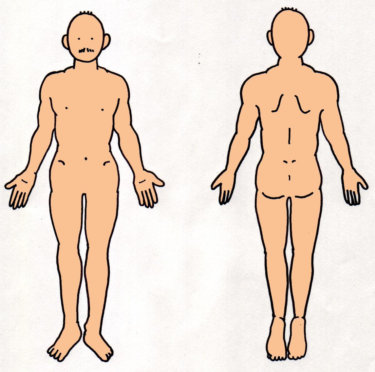 身体図のイラスト。身体図のゴム印。
