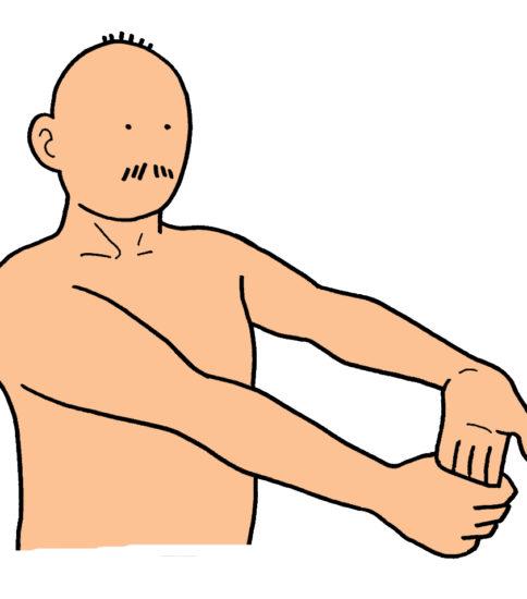 前腕屈筋群のストレッチ