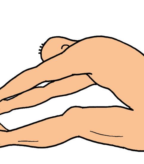 ウィリアムスの腰痛体操をイラストでご紹介 その2