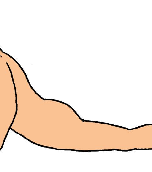 マッケンジーの腰痛体操をイラストでご紹介