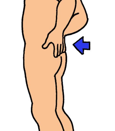 腰痛「これだけ体操」をイラストでご紹介 その1