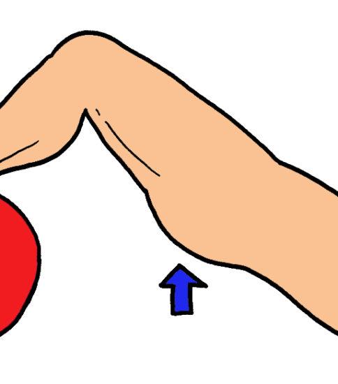 バランスボールを使用したブリッジ運動