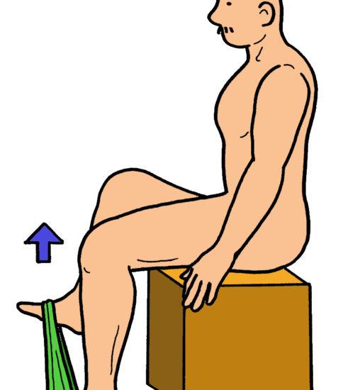 腸腰筋の筋力強化(ゴムを使用)