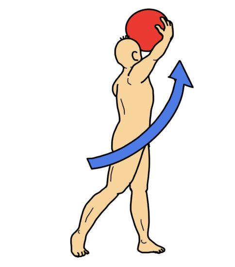 ボールを使用した体幹回旋・伸展運動
