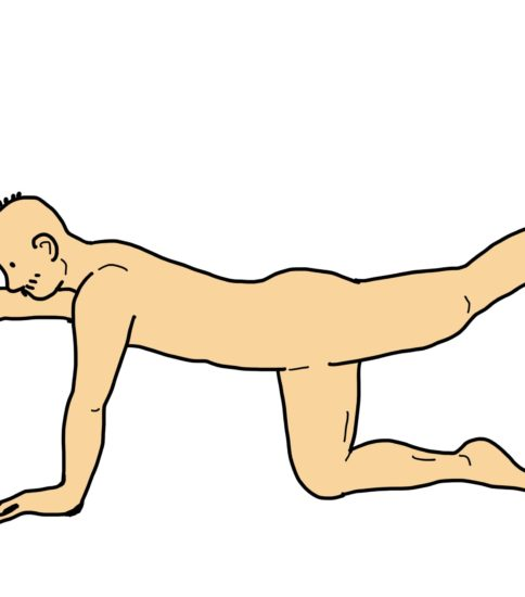 四つ這いでの上下肢挙上(ダイアゴナル)その2
